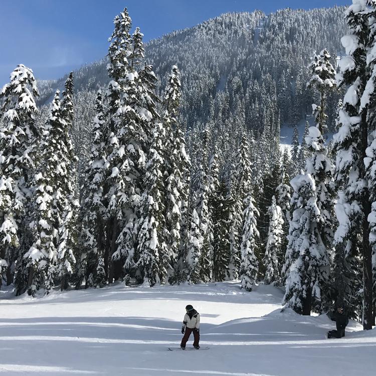 Tovolo's Ski Bonanza